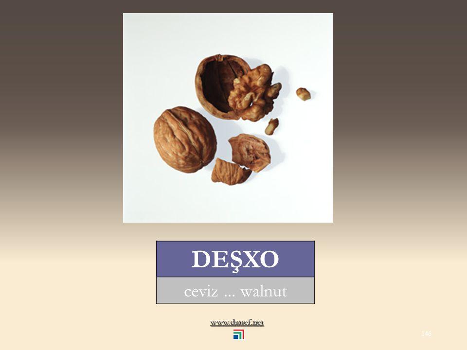 www.danef.net ĆIDE yerfıstığı... peanut 145