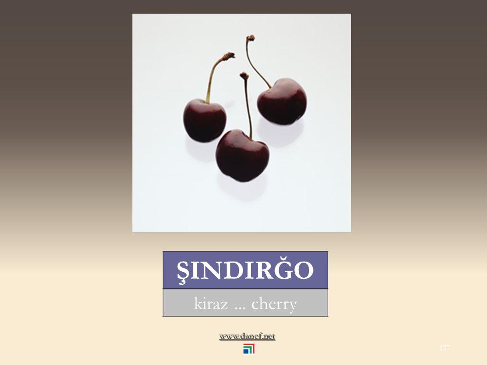 www.danef.net P Ḣ EGUĹ alıç... thorn apple 156