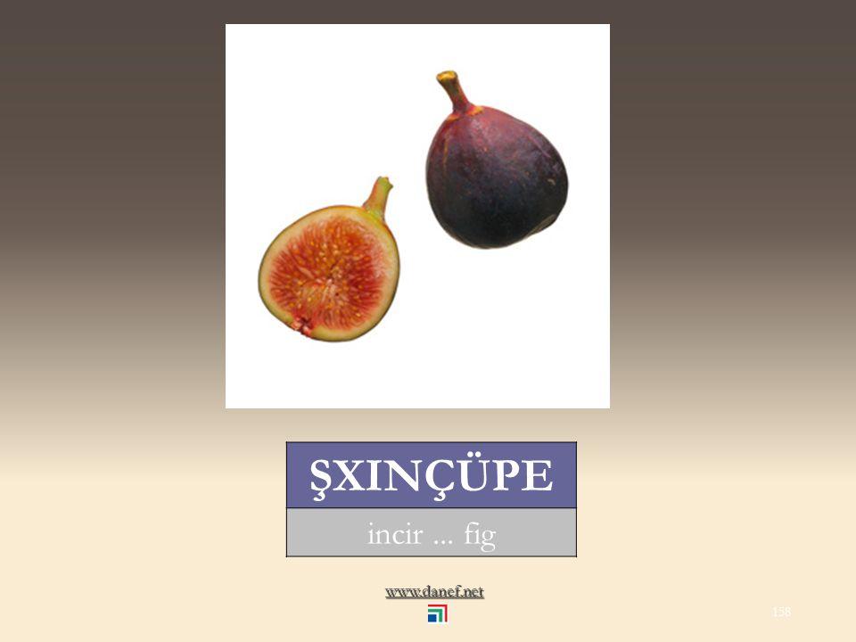 www.danef.net ŞINDIRĞO kiraz... cherry 157