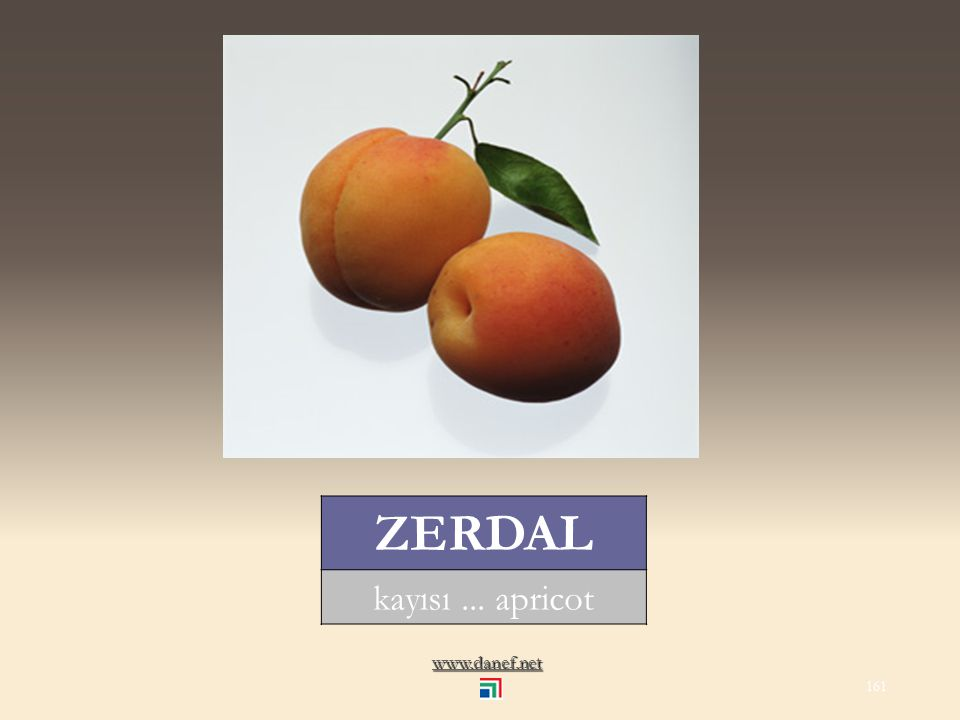 www.danef.net ZAYE kızılcık... cornelian cherry 160