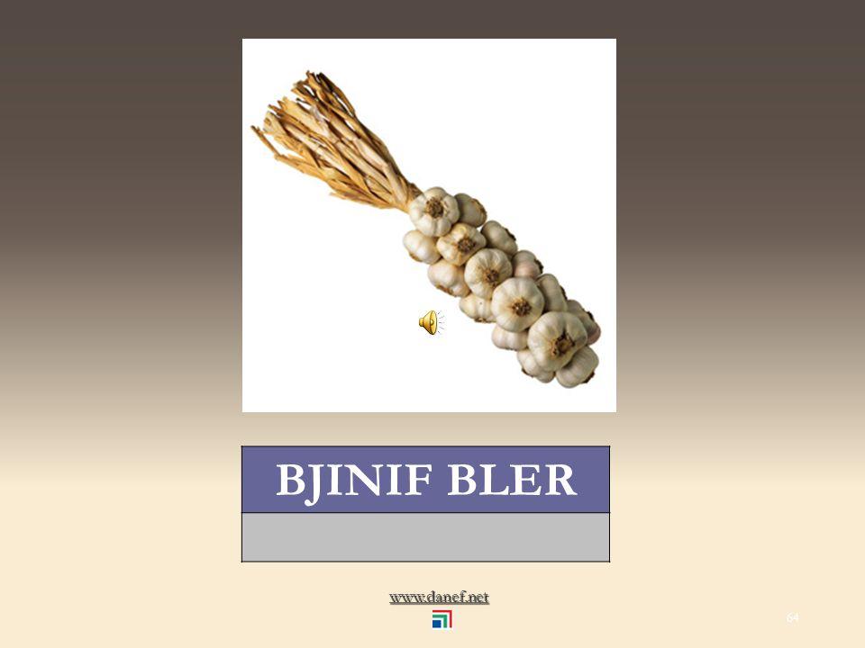 www.danef.net BJINIF sarımsak... garlic 63