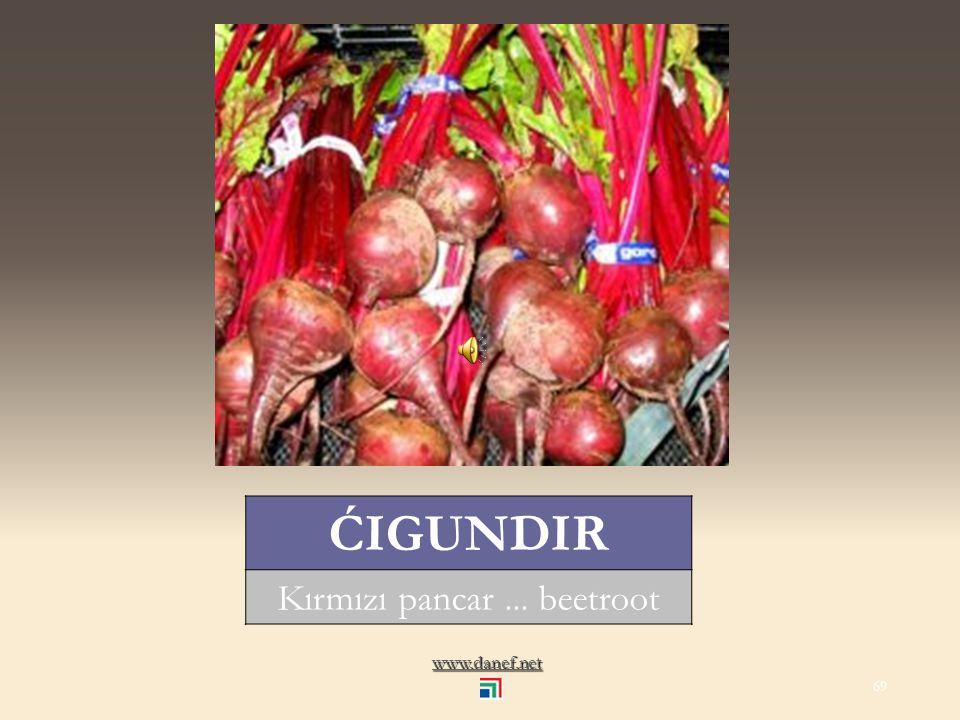 www.danef.net ĆIDE yerfıstığı... peanut 68
