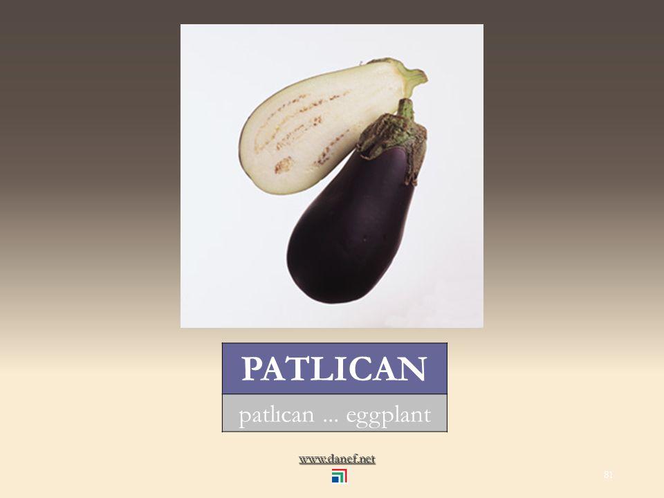 www.danef.net NEŞEBEGU` salatalık... cucumber 80