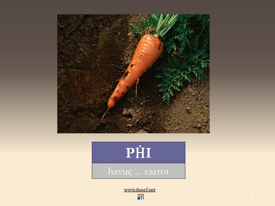 www.danef.net PATLICAN patlıcan... eggplant 81