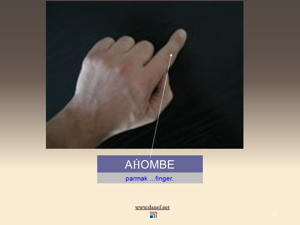 www.danef.net A el... hand 86