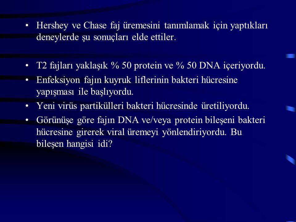 Hershey ve Chase faj üremesini tanımlamak için yaptıkları deneylerde şu sonuçları elde ettiler. T2 fajları yaklaşık % 50 protein ve % 50 DNA içeriyord