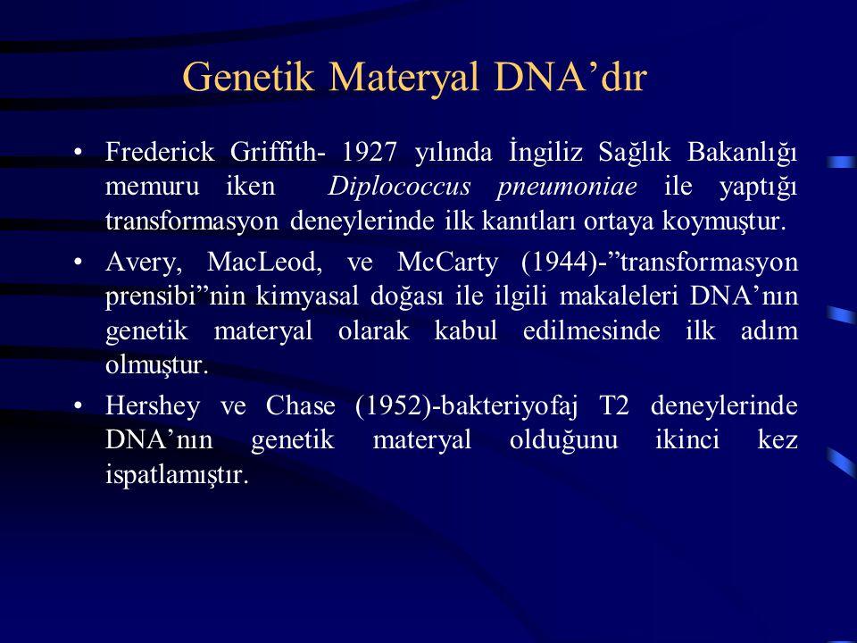 Genetik Materyal DNA'dır Frederick Griffith- 1927 yılında İngiliz Sağlık Bakanlığı memuru iken Diplococcus pneumoniae ile yaptığı transformasyon deney