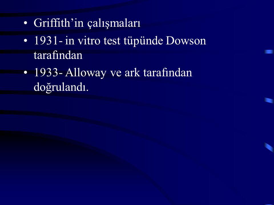 Griffith'in çalışmaları 1931- in vitro test tüpünde Dowson tarafından 1933- Alloway ve ark tarafından doğrulandı.