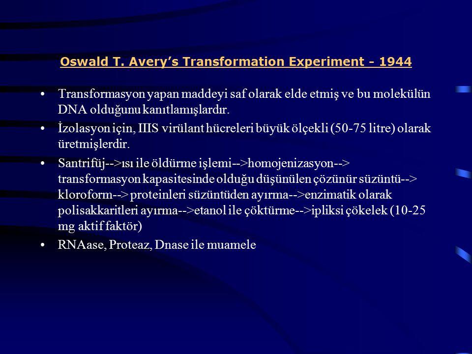 Oswald T. Avery's Transformation Experiment - 1944 Transformasyon yapan maddeyi saf olarak elde etmiş ve bu molekülün DNA olduğunu kanıtlamışlardır. İ
