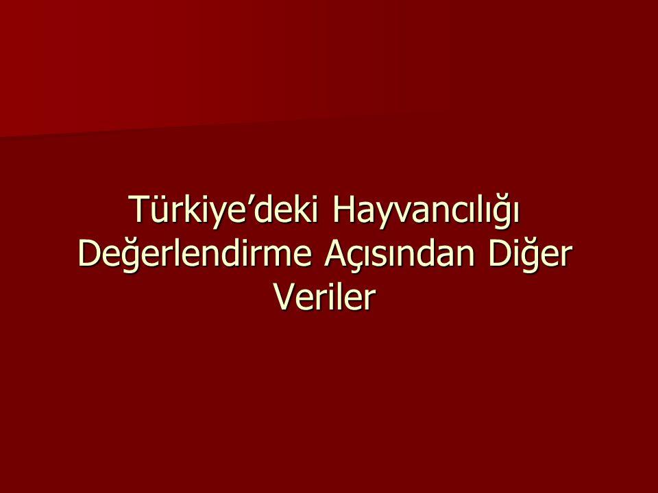 Türkiye'deki Hayvancılığı Değerlendirme Açısından Diğer Veriler