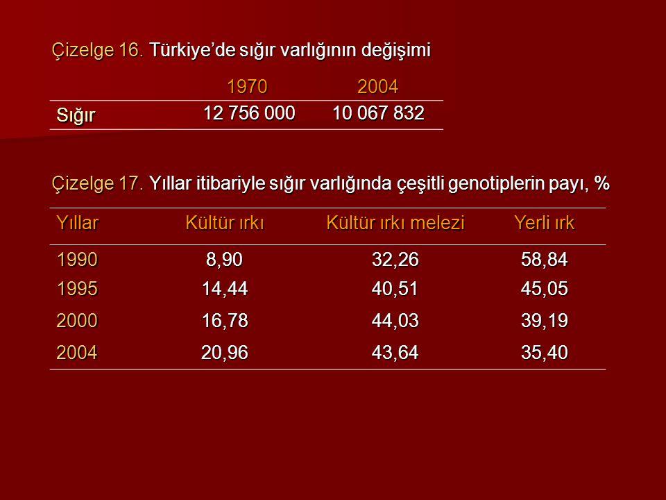 Çizelge 16. Türkiye'de sığır varlığının değişimi Çizelge 17. Yıllar itibariyle sığır varlığında çeşitli genotiplerin payı, % 19702004 Sığır 12 756 000