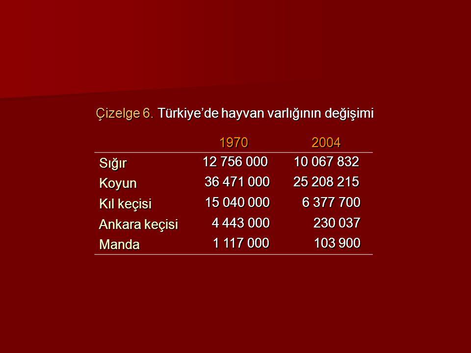Çizelge 6. Türkiye'de hayvan varlığının değişimi 19702004 Sığır 12 756 000 12 756 000 10 067 832 Koyun 36 471 000 36 471 000 25 208 215 Kıl keçisi 15