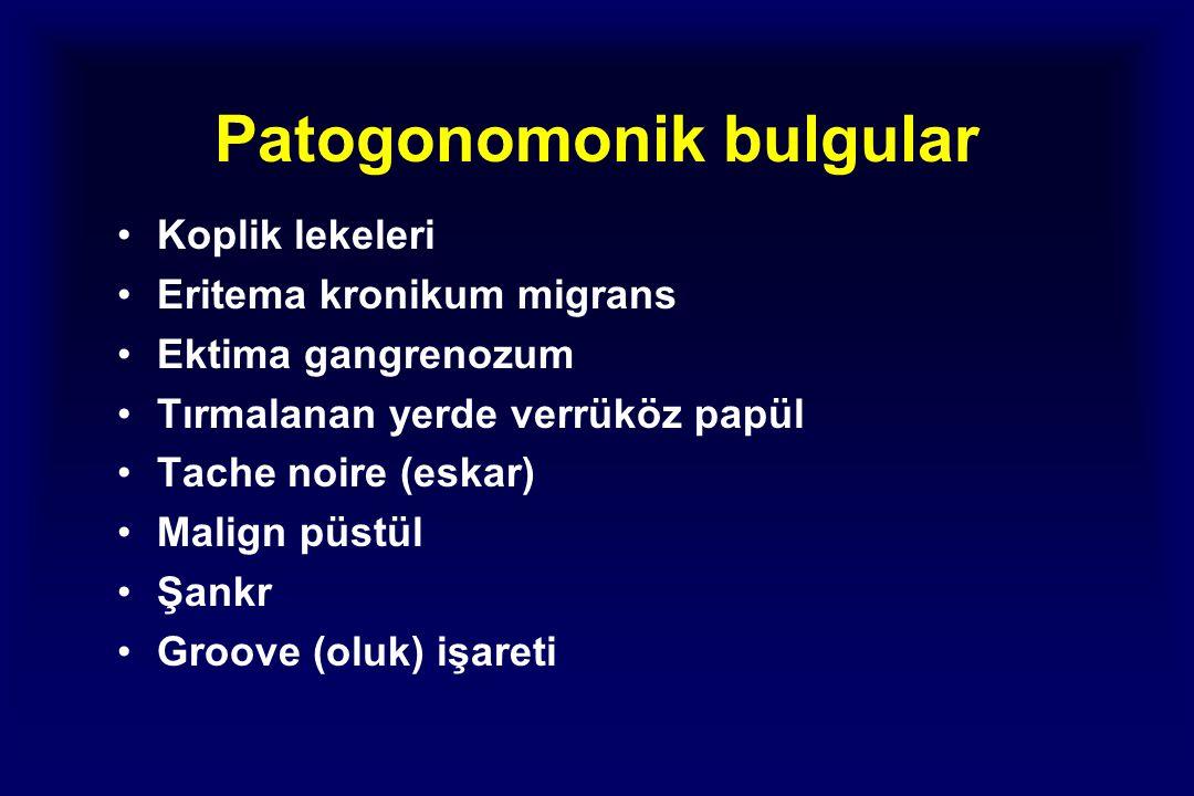 Patogonomonik bulgular Koplik lekeleri Eritema kronikum migrans Ektima gangrenozum Tırmalanan yerde verrüköz papül Tache noire (eskar) Malign püstül Şankr Groove (oluk) işareti