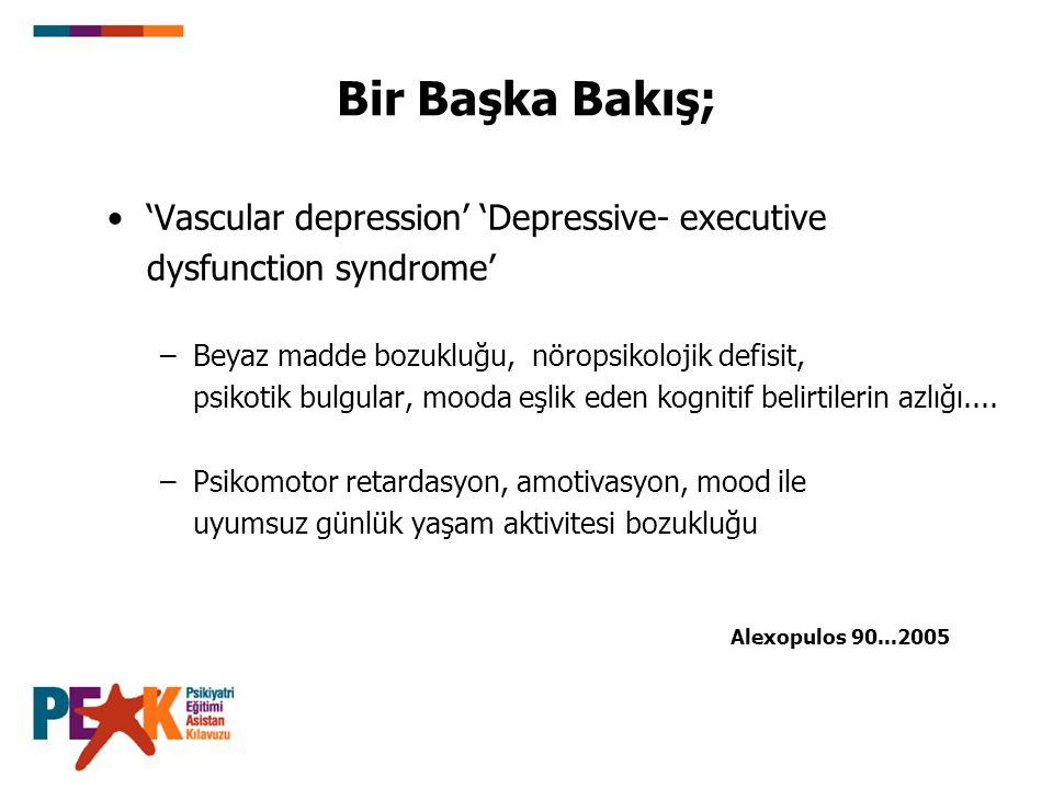 Bir Başka Bakış; 'Vascular depression' 'Depressive- executive dysfunction syndrome' –Beyaz madde bozukluğu, nöropsikolojik defisit, psikotik bulgular,