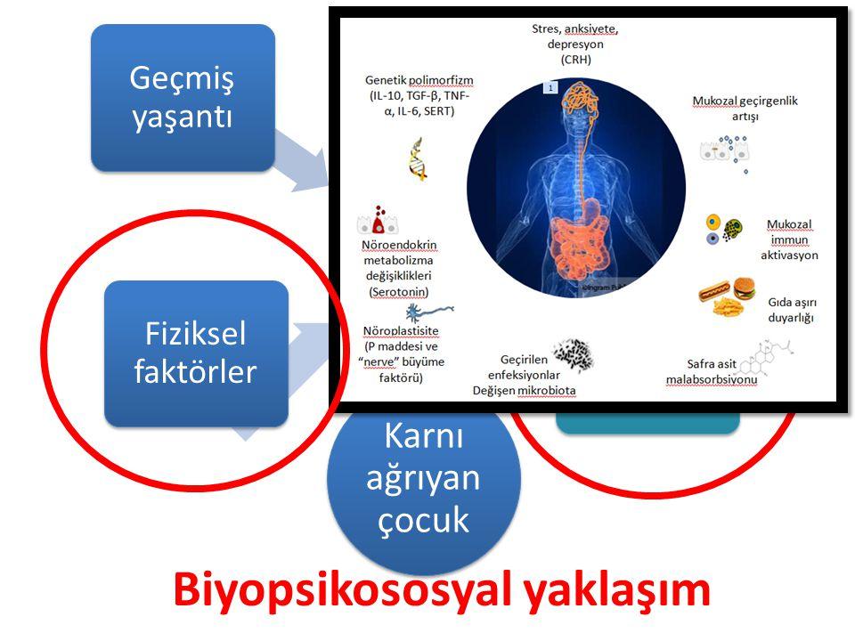 Biyopsikososyal yaklaşım Karnı ağrıyan çocuk Fiziksel faktörler Genetik altyapı Psikososyal faktörler Viseral hiperaljezi Geçmiş yaşantı