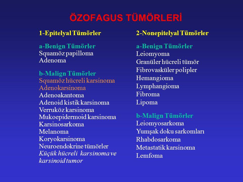 ÖZOFAGUS'UN MALİGN TÜMÖRLERİ Özofagus'un malign tümörleri seyrek görülürler.