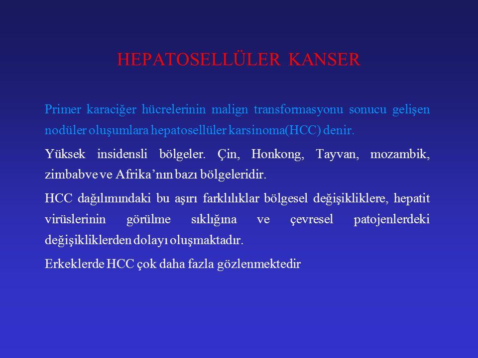 HEPATOSELLÜLER KANSER Primer karaciğer hücrelerinin malign transformasyonu sonucu gelişen nodüler oluşumlara hepatosellüler karsinoma(HCC) denir.