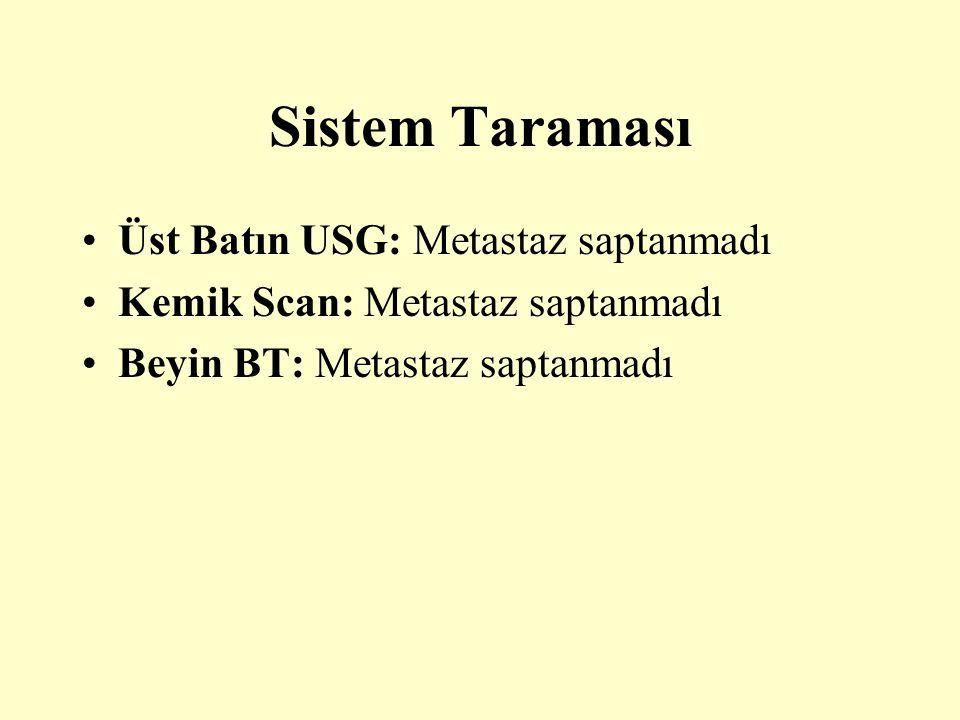 Sistem Taraması Üst Batın USG: Metastaz saptanmadı Kemik Scan: Metastaz saptanmadı Beyin BT: Metastaz saptanmadı