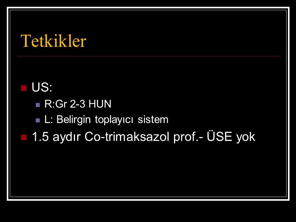Tetkikler US: R:Gr 2-3 HUN L: Belirgin toplayıcı sistem 1.5 aydır Co-trimaksazol prof.- ÜSE yok