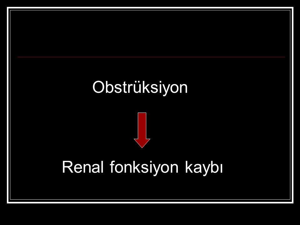 Obstrüksiyon Renal fonksiyon kaybı