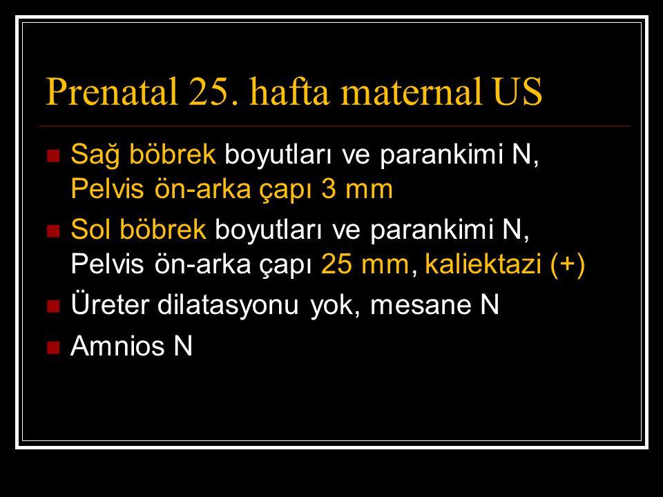 Prenatal 25. hafta maternal US Sağ böbrek boyutları ve parankimi N, Pelvis ön-arka çapı 3 mm Sol böbrek boyutları ve parankimi N, Pelvis ön-arka çapı