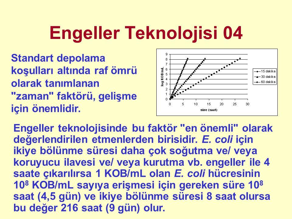 Engeller Teknolojisi 04 Standart depolama koşulları altında raf ömrü olarak tanımlanan