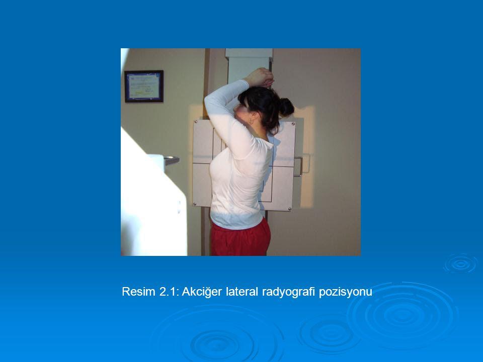 Resim 2.1: Akciğer lateral radyografi pozisyonu