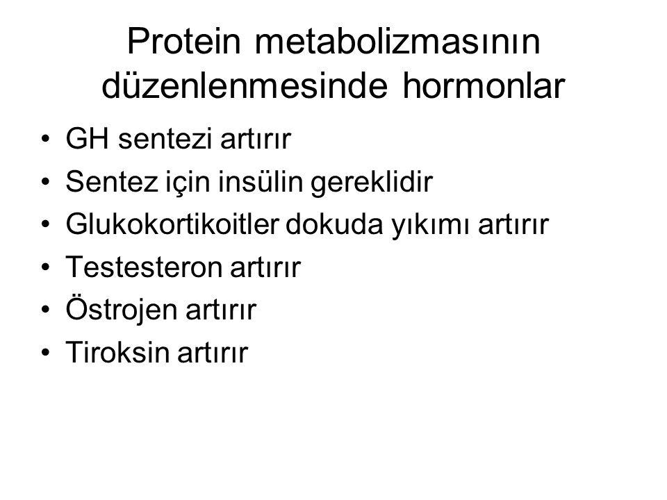 Protein metabolizmasının düzenlenmesinde hormonlar GH sentezi artırır Sentez için insülin gereklidir Glukokortikoitler dokuda yıkımı artırır Testester