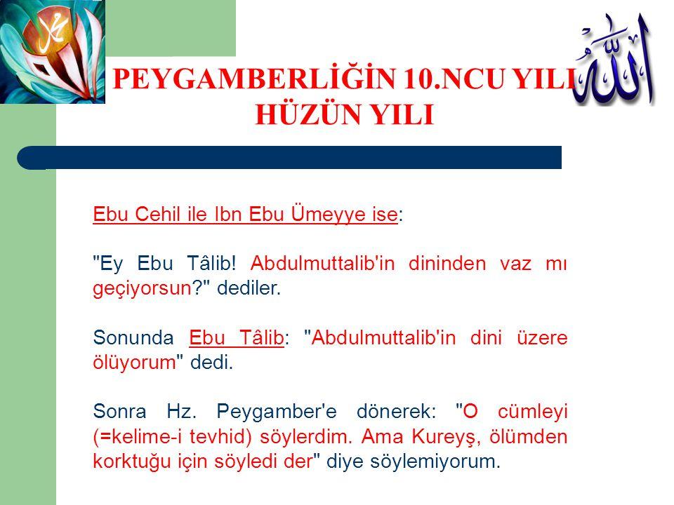 Ebu Cehil ile Ibn Ebu Ümeyye ise: Ey Ebu Tâlib.