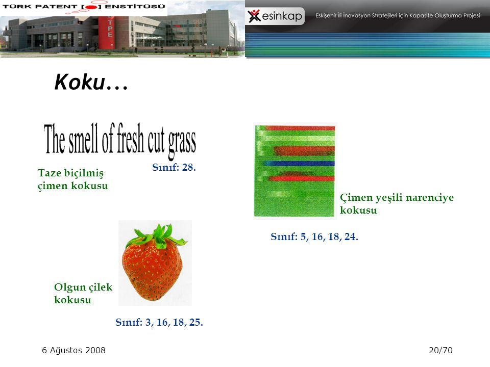 6 Ağustos 200820/70 Koku... Sınıf: 28. Sınıf: 5, 16, 18, 24. Sınıf: 3, 16, 18, 25. Çimen yeşili narenciye kokusu Taze biçilmiş çimen kokusu Olgun çile