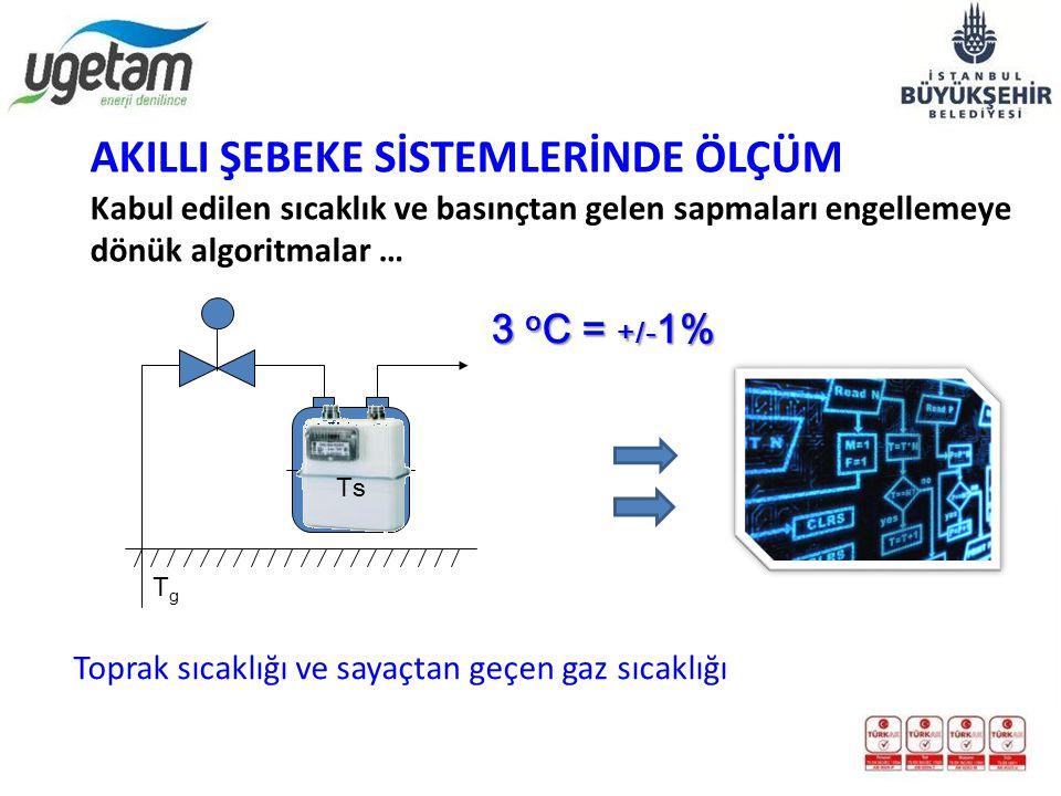 TgTg 3 o C = +/- 1% TsTs Toprak sıcaklığı ve sayaçtan geçen gaz sıcaklığı Kabul edilen sıcaklık ve basınçtan gelen sapmaları engellemeye dönük algorit