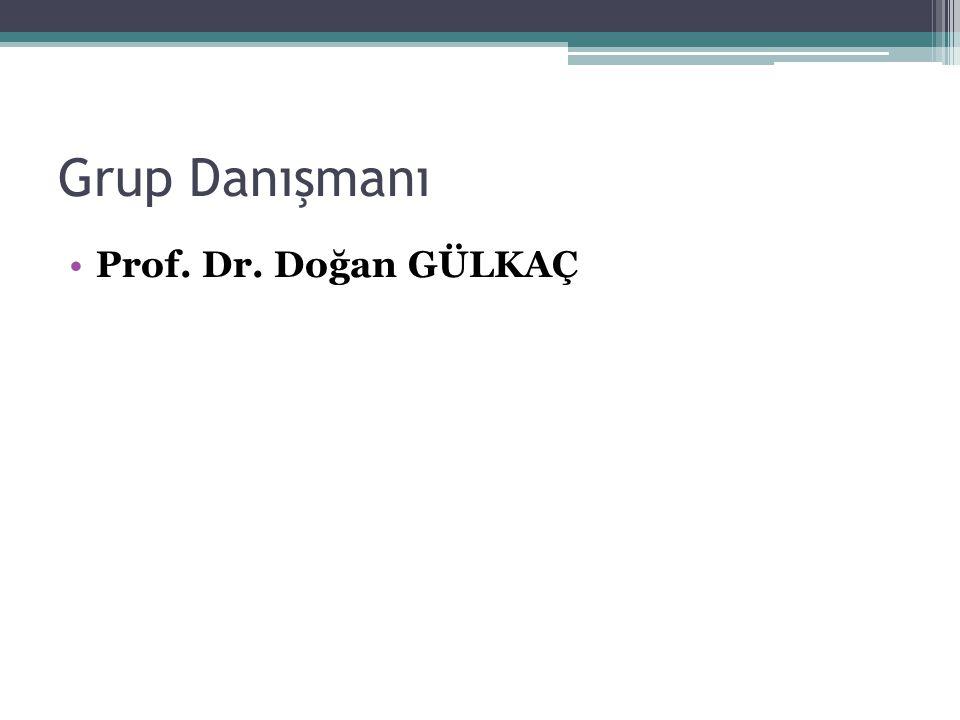 Grup Danışmanı Prof. Dr. Doğan GÜLKAÇ