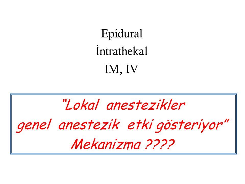 """Epidural İntrathekal IM, IV """"Lokal anestezikler genel anestezik etki gösteriyor"""" Mekanizma ????"""
