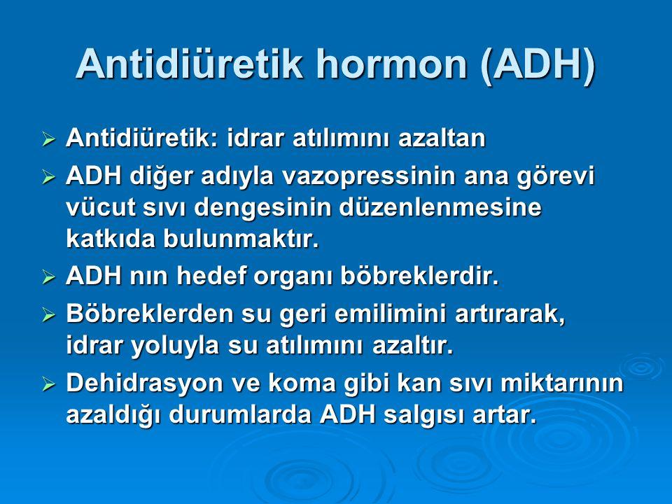 Antidiüretik hormon (ADH)  Antidiüretik: idrar atılımını azaltan  ADH diğer adıyla vazopressinin ana görevi vücut sıvı dengesinin düzenlenmesine kat