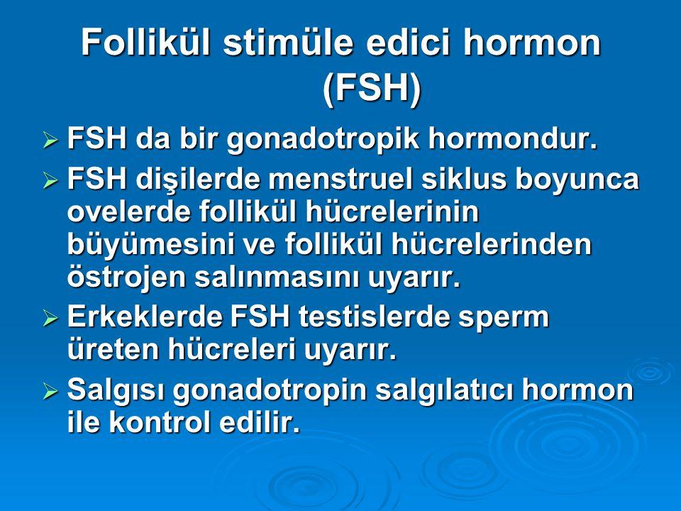 Follikül stimüle edici hormon (FSH)  FSH da bir gonadotropik hormondur.  FSH dişilerde menstruel siklus boyunca ovelerde follikül hücrelerinin büyüm