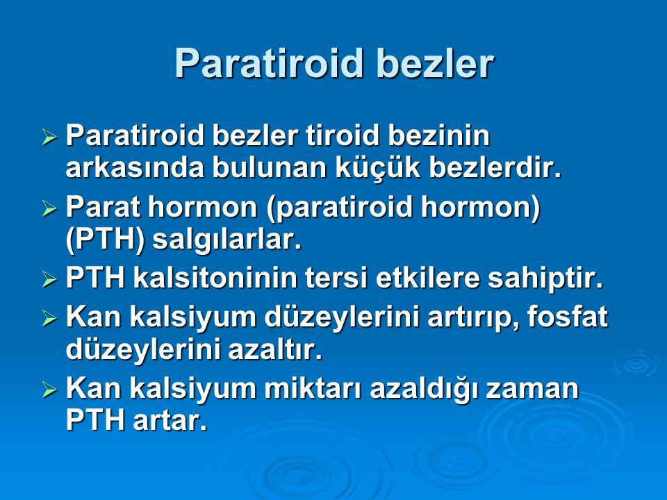 Paratiroid bezler  Paratiroid bezler tiroid bezinin arkasında bulunan küçük bezlerdir.  Parat hormon (paratiroid hormon) (PTH) salgılarlar.  PTH ka