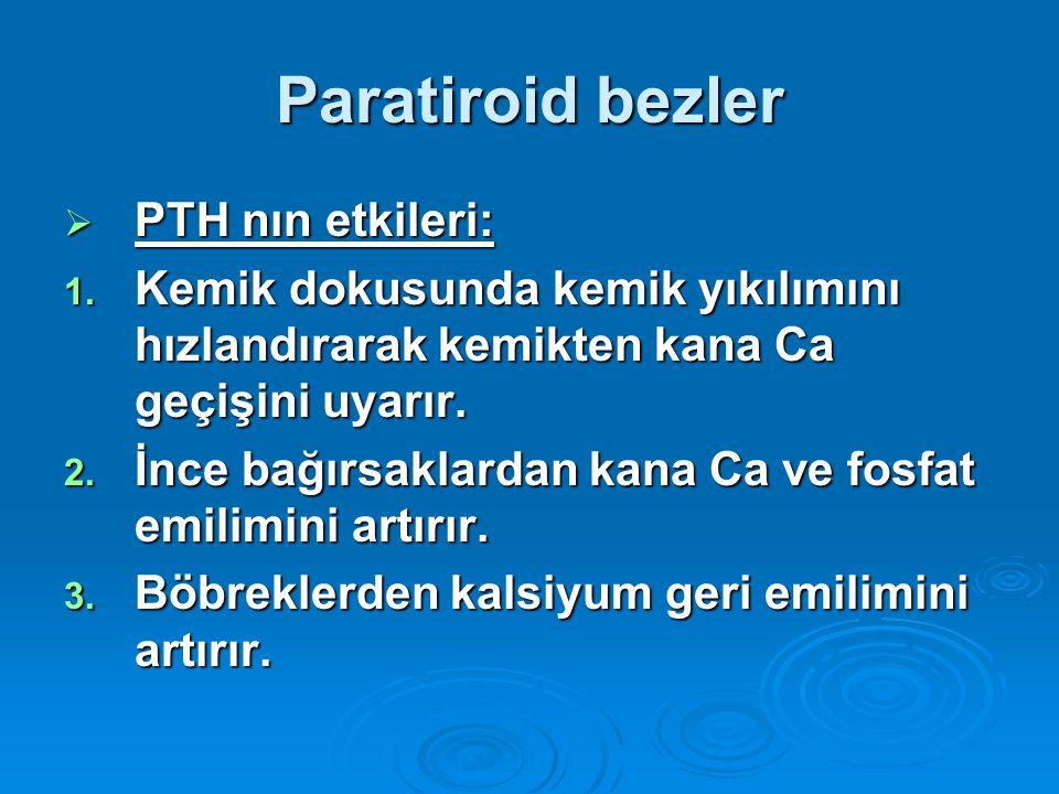 Paratiroid bezler  PTH nın etkileri: 1. Kemik dokusunda kemik yıkılımını hızlandırarak kemikten kana Ca geçişini uyarır. 2. İnce bağırsaklardan kana