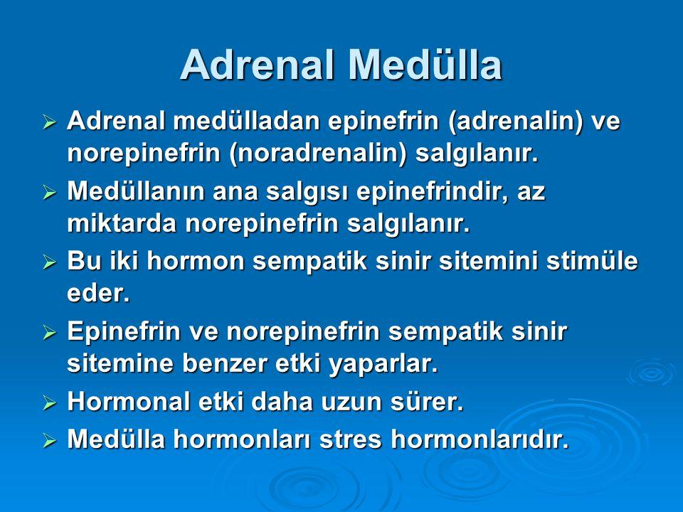 Adrenal Medülla  Adrenal medülladan epinefrin (adrenalin) ve norepinefrin (noradrenalin) salgılanır.  Medüllanın ana salgısı epinefrindir, az miktar