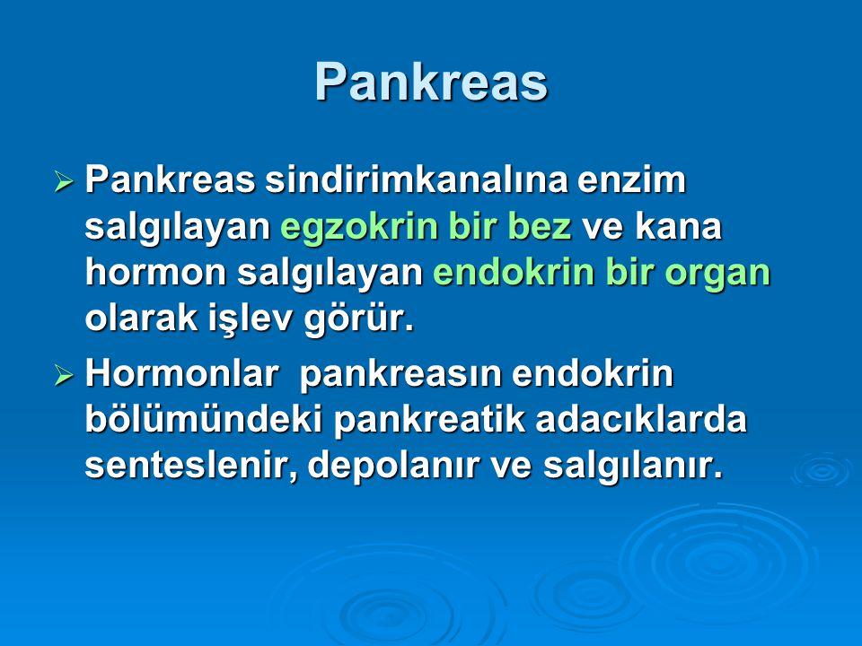 Pankreas  Pankreas sindirimkanalına enzim salgılayan egzokrin bir bez ve kana hormon salgılayan endokrin bir organ olarak işlev görür.  Hormonlar pa