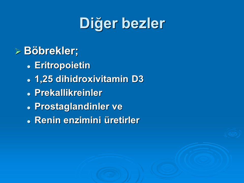 Diğer bezler  Böbrekler; Eritropoietin Eritropoietin 1,25 dihidroxivitamin D3 1,25 dihidroxivitamin D3 Prekallikreinler Prekallikreinler Prostaglandi