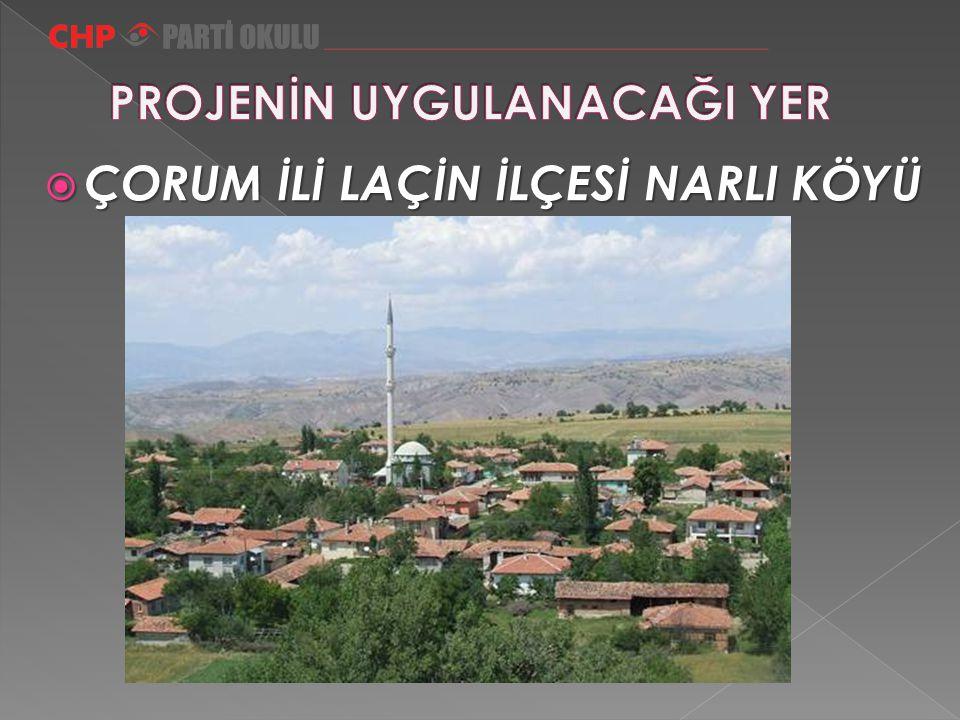 Çorum'ın Laçin İlçesine bağlı Narlı Köyü  ÇORUM İLİ LAÇİN İLÇESİ NARLI KÖYÜ