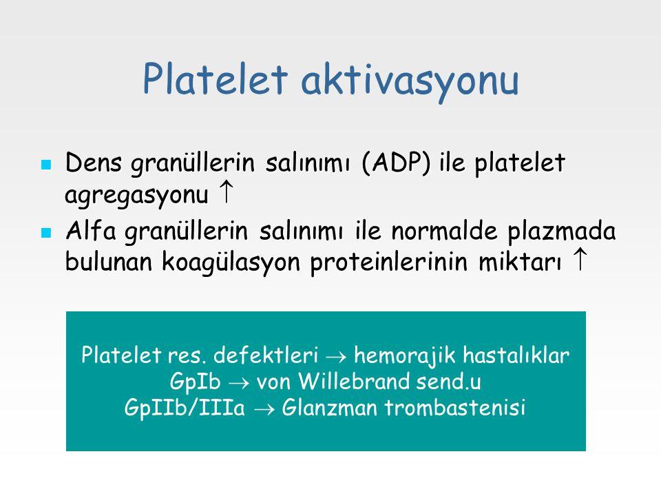 Platelet aktivasyonu Dens granüllerin salınımı (ADP) ile platelet agregasyonu  Dens granüllerin salınımı (ADP) ile platelet agregasyonu  Alfa granül