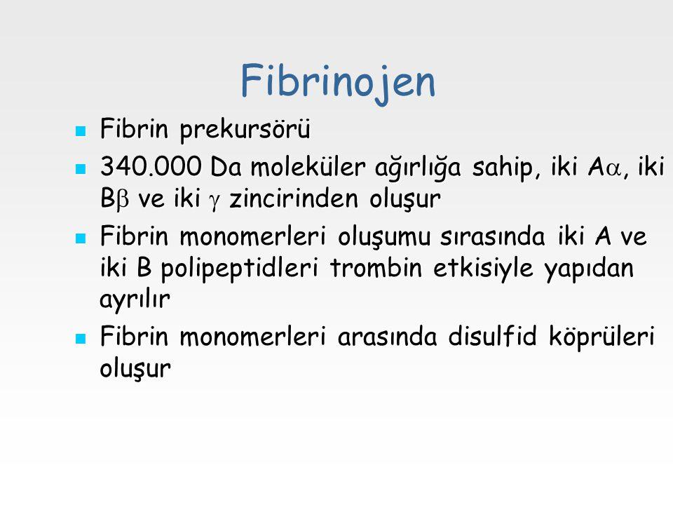 Fibrinojen Fibrin prekursörü Fibrin prekursörü 340.000 Da moleküler ağırlığa sahip, iki A , iki B  ve iki  zincirinden oluşur 340.000 Da moleküler