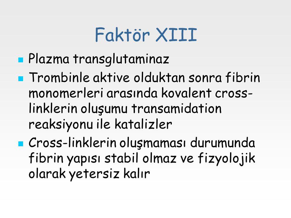 Faktör XIII Plazma transglutaminaz Plazma transglutaminaz Trombinle aktive olduktan sonra fibrin monomerleri arasında kovalent cross- linklerin oluşum