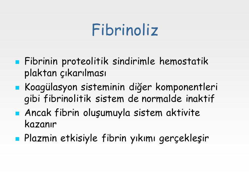 Fibrinoliz Fibrinin proteolitik sindirimle hemostatik plaktan çıkarılması Fibrinin proteolitik sindirimle hemostatik plaktan çıkarılması Koagülasyon s