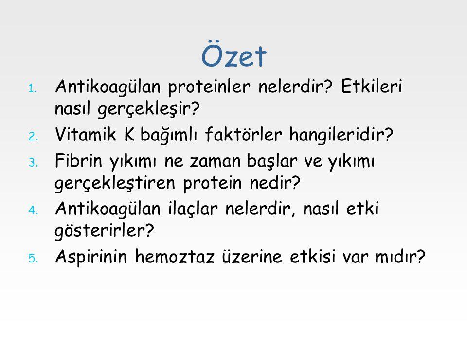 Özet 1. Antikoagülan proteinler nelerdir? Etkileri nasıl gerçekleşir? 2. Vitamik K bağımlı faktörler hangileridir? 3. Fibrin yıkımı ne zaman başlar ve