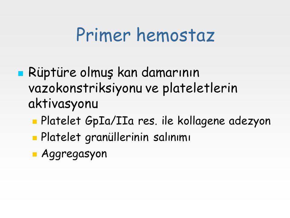 Primer hemostaz Rüptüre olmuş kan damarının vazokonstriksiyonu ve plateletlerin aktivasyonu Rüptüre olmuş kan damarının vazokonstriksiyonu ve platelet