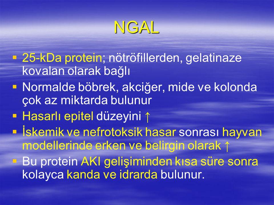 NGAL   25-kDa protein; nötröfillerden, gelatinaze kovalan olarak bağlı   Normalde böbrek, akciğer, mide ve kolonda çok az miktarda bulunur   Has