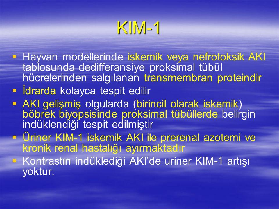 KIM-1   Hayvan modellerinde iskemik veya nefrotoksik AKI tablosunda dedifferansiye proksimal tübül hücrelerinden salgılanan transmembran proteindir