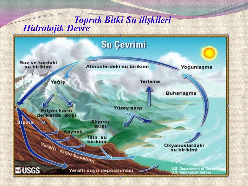 Toprak Bitki Su ilişkileri Hidrolojik Devre